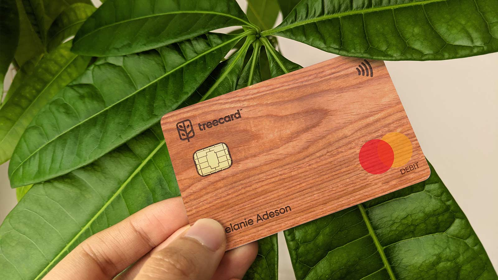 Treecard's wooden debit card allows you to plant trees while you spend.