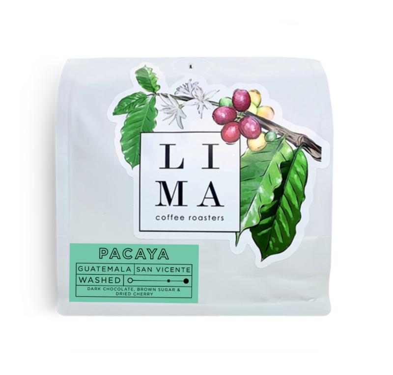 Guatemala Pacaya