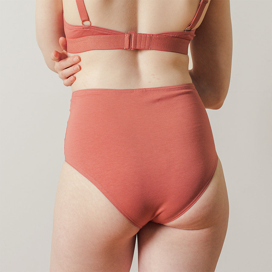 Highwaisted Brief